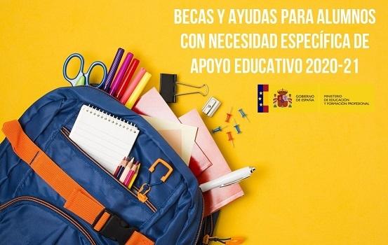 Becas y ayudas para alumnos NESE 2020-21